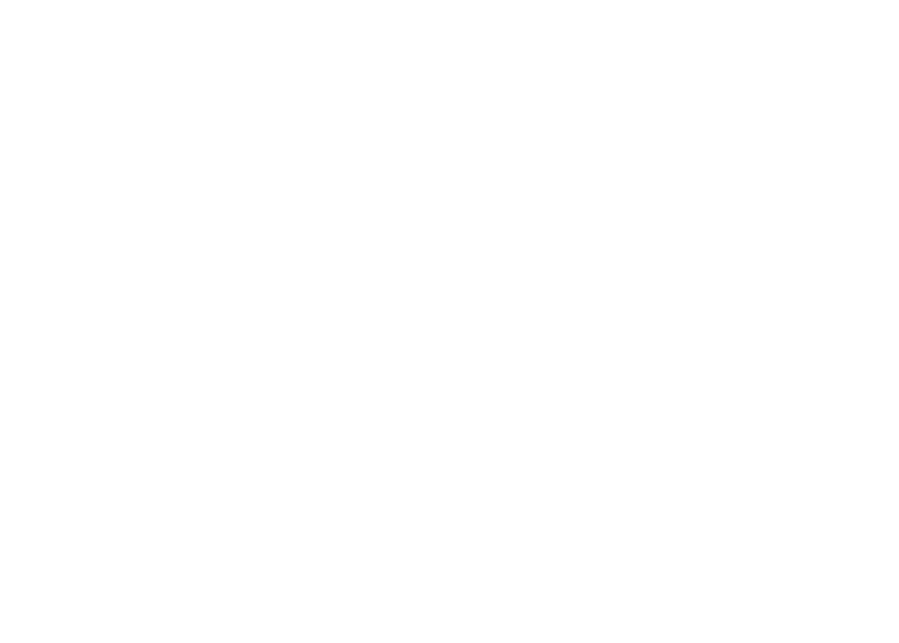 Schatveld-DiaPositief-2pt-Black-BG